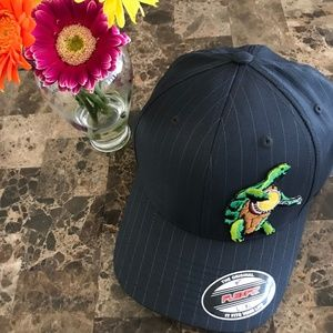 Grateful Dead ⚡️Terrapin Banjo Turtle Hat